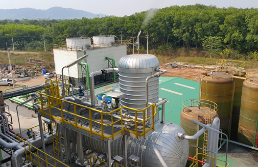 Biomass Power Plant Projects Consultant